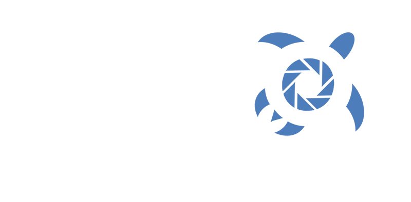 AKITO DIVING TEAM